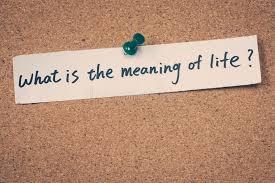 zin van het leven